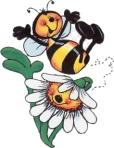 polen1